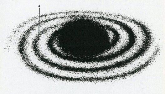NBDv2-2-7-galaxy001